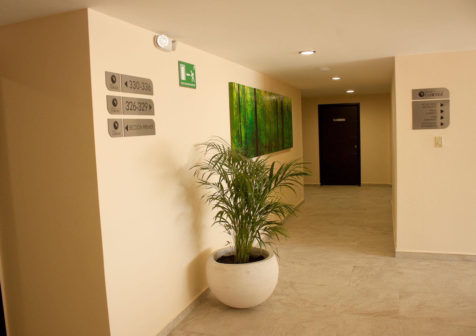 pasillo habitacion bosque hotel cortez